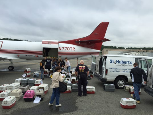 St. Huberts Wings of Rescue