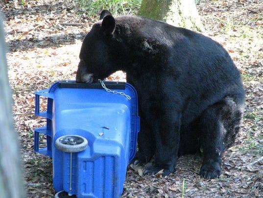 636174847825002025-Bear-resistant-cans-2.jpg