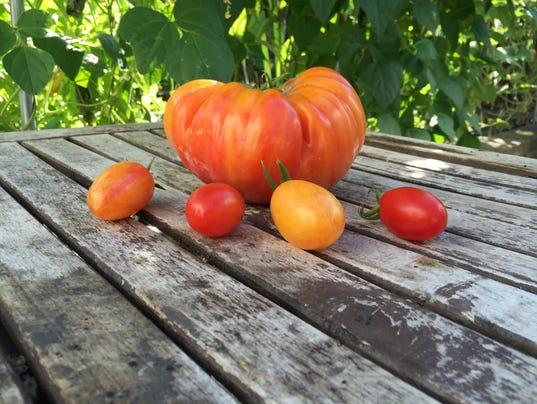 636328751487008386-triple-fruits.JPG