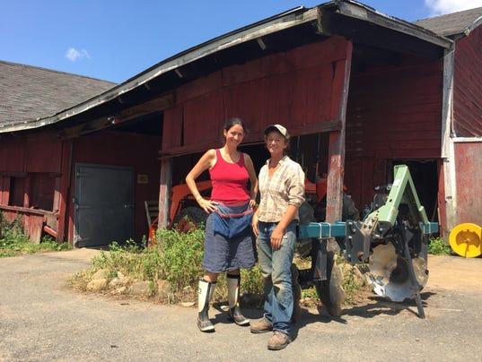 Cropsey Farm barn restoration