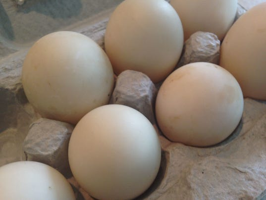 636403116341876764-FNPTab2-08-23-2017-Taste-1-D012--2017-08-22-IMG-Egg-eggs-carton-1-1-SIJBV3PB-L1083493387-IMG-Egg-eggs-carton-1-1-SIJBV3PB.jpg