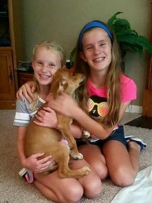 After making their donation to the Kenton County Animal Shelter, Anna Pohlman, 8, and Emma Pohlman, 12, adopted a puppy, Bambi.