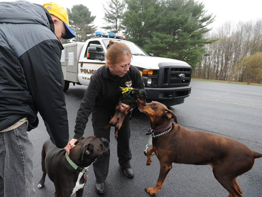Newark's only Animal Control Officer Donna Vickers, who recently celebrated her 25th anniversary on the job, plays with Milo (left), a four-year-old Boxer; Rocky (middle), a four-year-old Dachshund and Casey, a five-year-old Doberman, at the First Church of the Nazarene in Newark with Milo's owner Kevin Sullivan of Newark.