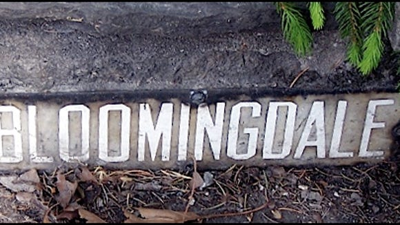 """""""Bloomingdale"""" shown in the front steps of stonewall fronting 3405 East Market Street (2015 Photo submitted by Terrence Downs)"""
