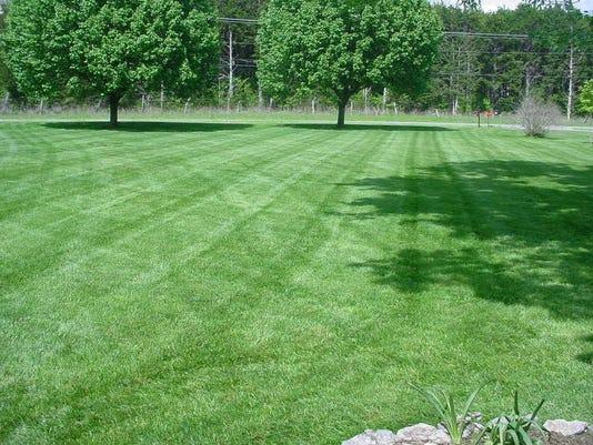 MM Grass 4-18-15