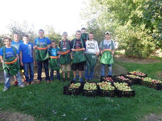 MNH 0408 Auburndale apples.jpg