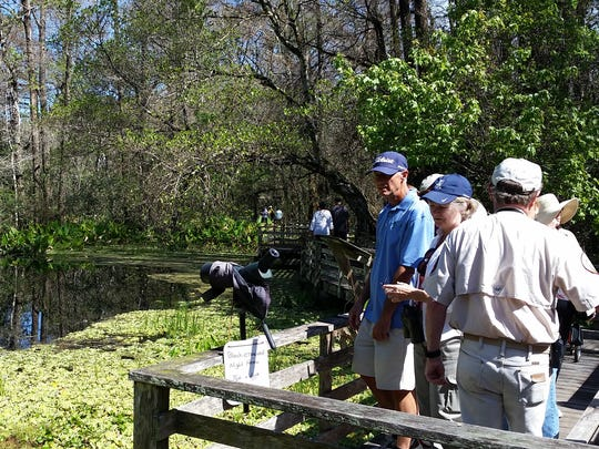 Visitors wait to use stationary binoculars to watch a black-crowned night heron in the distance on Tuesday at Corkscrew Swamp Sanctuary.