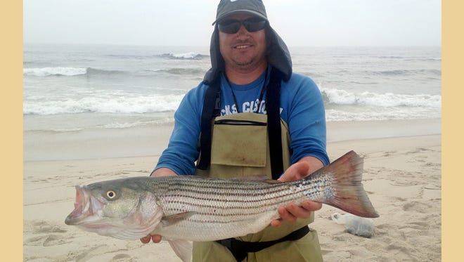 Paulinho Romanichen with a 30-inch striped bass that he caught at Island Beach State Park.