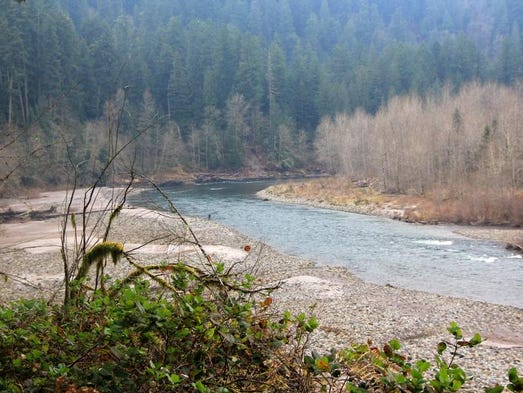 The trails at Oxbow Regional Park provide views of the Sandy River.
