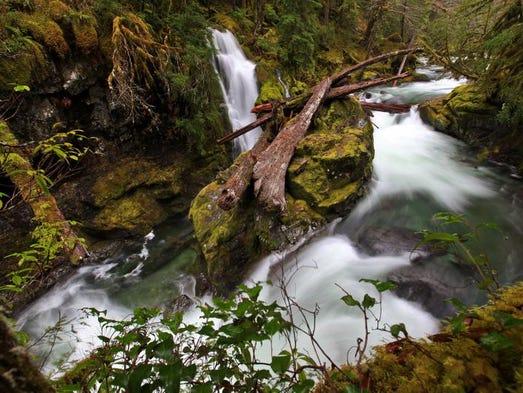 Best hikes near Salem and Keizer. No. 1 - Opal Creek Trail. Flume Creek Falls as it enters Opal Creek, Opal Creek Wilderness, December 7, 2012.