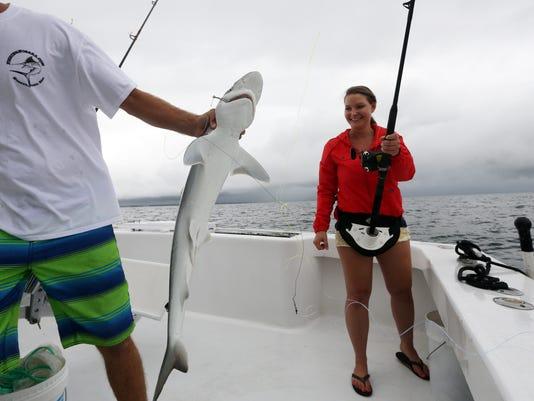 Shark Trips_Rams (1).jpg