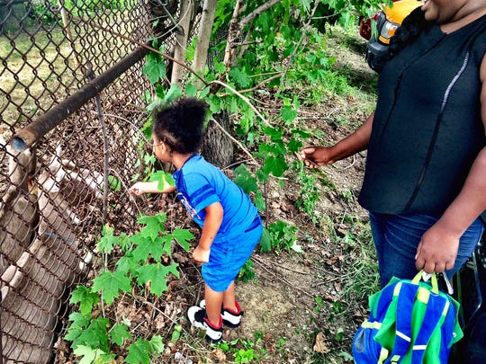 Khyle Herring, 4, feeds a leaf to a goats underneath the Walkway Over the Hudson.