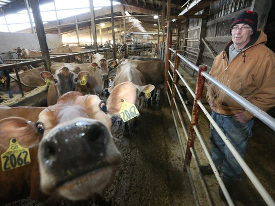 Tom Hochkammer with some of his cows at the stalls