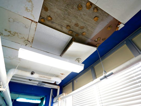Missing, loose and moisture stained ceiling tiles at