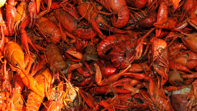 Guests can enjoy all you can eat crawfish Friday during Music & Mudbugs at the train shed in downtown Montgomery.