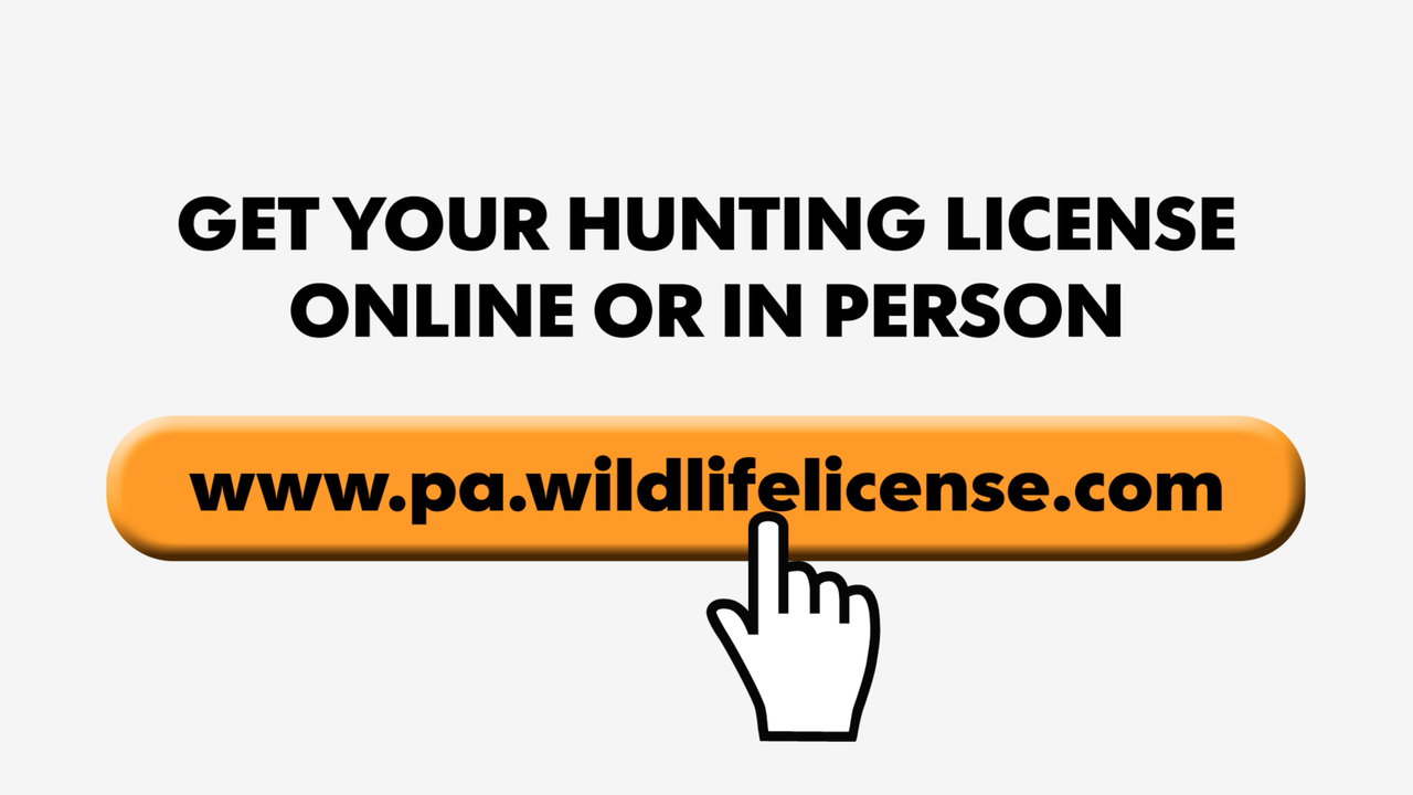 First-time hunters and trappers must pass a hunting education course before being able to purchase a Pennsylvania hunting license.