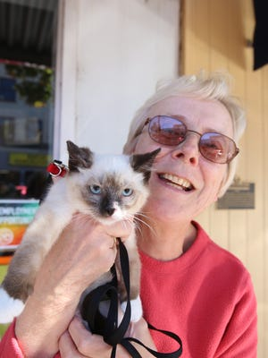Billy, a siamese available for adoption through CAFA, and Lora Meisner were promoting Saturday's microchip event at Salem Saturday Market.
