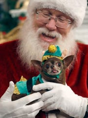 Chloe Kardoggian, a 12-year old rescue chihuahua, poses for a photo with Santa in 2016.