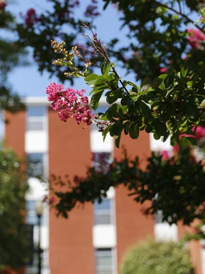 A portion of the HPU campus is pictured in the spring.