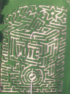 This year's maze at Long Acre Farms in Macedon is shaped as a traditional ballot box. Guests will learn about the history of voting while navigating the paths and assembling a map.