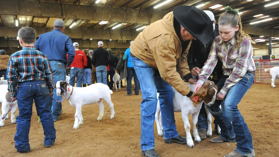 Kyleigh McKissack, right, fixes the collar on her goat,