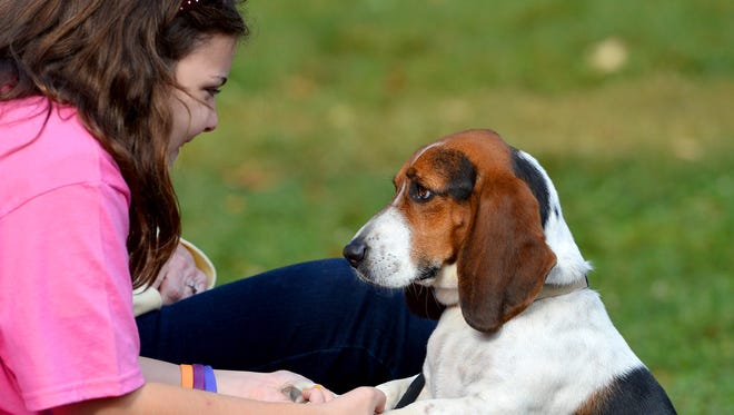 """Maddie Graff of Fishersville holds the paws of Angel during the Augusta Regional SPCA's annual """"Pets in the Park"""" at Gypsy Hill Park in 2013."""