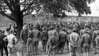 """The """"Naturalization  Tree"""" at Camp Zachary Taylor in Louisville is shown in a swearing-in ceremony in 1918."""