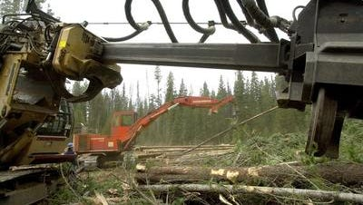Timber payments are shrinking as logging slows down.