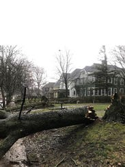 High winds from Tuesday evening's storms blew down