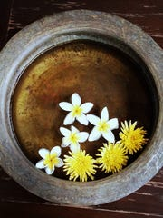 Photographic still lifes from Vietnam by Susan Raines.