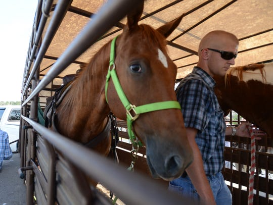 Saltwater Cowboy Justin Lewis leads his horse out of