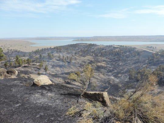 -Crooked Creek Fire Photo 2a.JPG_20140806.jpg