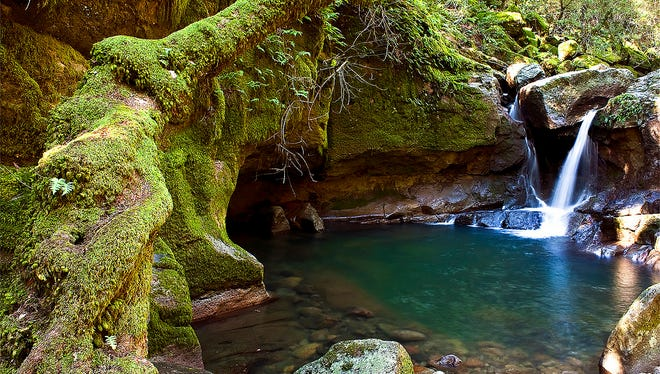 """The 1.2-mile hike (round trip) meanders through mossy-green forest to a peaceful creek and then this waterfall, which empties into a """"punchbowl"""" large enough for swimming."""