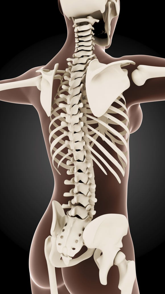 In a recent study, men consistently preferred women whose spinal curvature was closer to optimum regardless of buttock size.