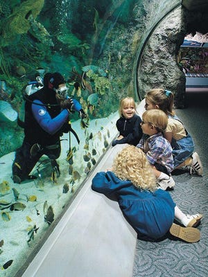 Children watch a diver interact with marine life at Aquarium of the Pacific in Long Beach, California.