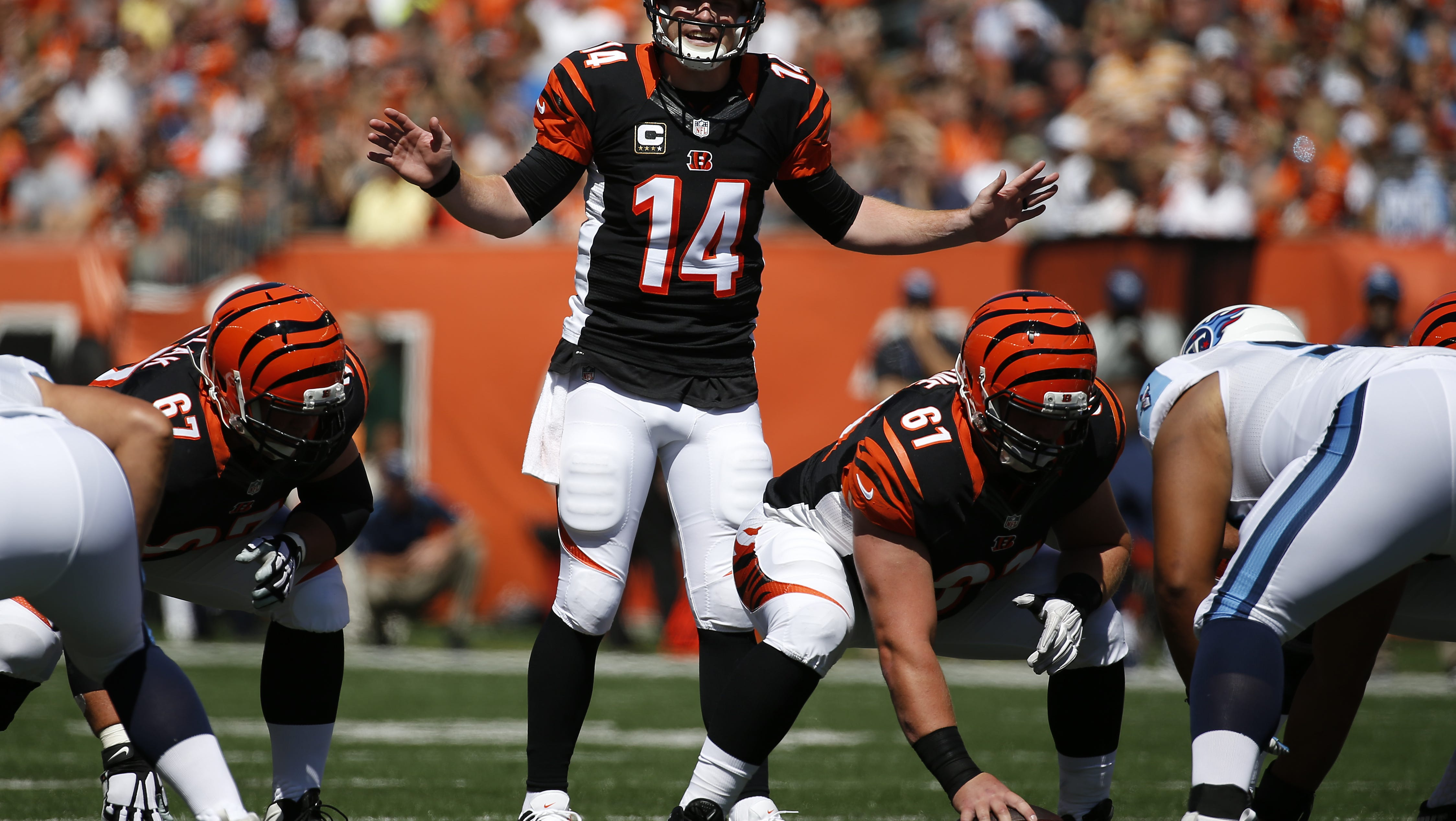 Bengals fans give their boldest predictions for Sunday's game