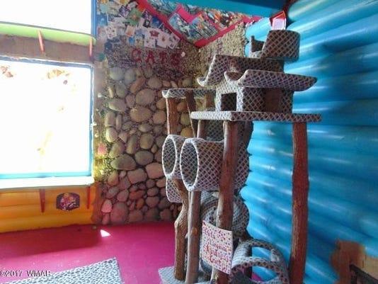 Arizona cat house