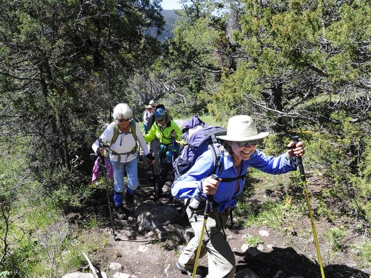 The Roaring Creek Trail is in the Poudre Canyon, about a mile past Big Bend campground.
