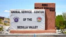 Animal Service Center of the Mesilla Valley