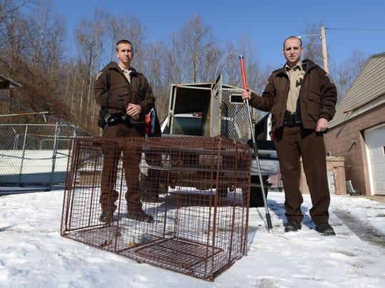 cos 01xx animals laws 2.jpg