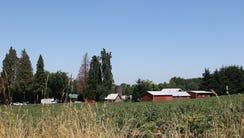 A shooting outside a rural home outside Woodburn left