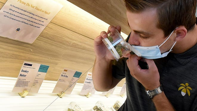 Joseph Stankowski, launch team leader and metrc administrator for Lume Cannabis Co. shows how you can smell the canisters which are attached containing the cannabis flowers of the different strains on display in the showroom of the Lume Cannabis Co. which opened in Petersburg Friday, Sept. 4.