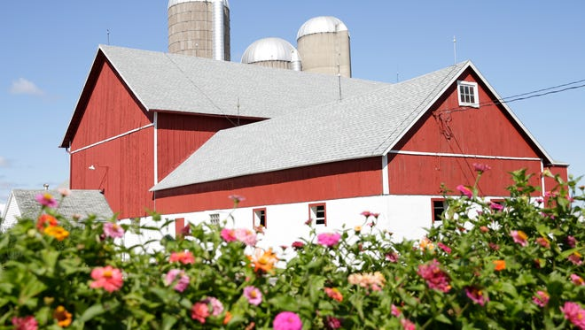 The number of dairy farms in Wisconsin has fallen by over 20 percentin the last five years, according to statistics from the Wisconsin Department of Agriculture, Trade and Consumer Protection.