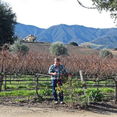 Pessagno and Puma Road Wineries