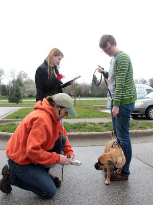 Liz Ford scans Cassandra Elton's puggle, Loki, for a microchip during a 2013 microchipping event in Iowa City. Ford was named the city's new animal services supervisor earlier this month.
