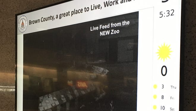 A video board at Green Bay Austin Straubel International Airport shows a live feed from Brown County's NEW Zoo.