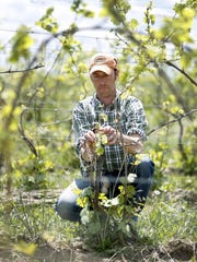 Fred Merwarth, co-owner of Hermann J. Wiemer Vineyard