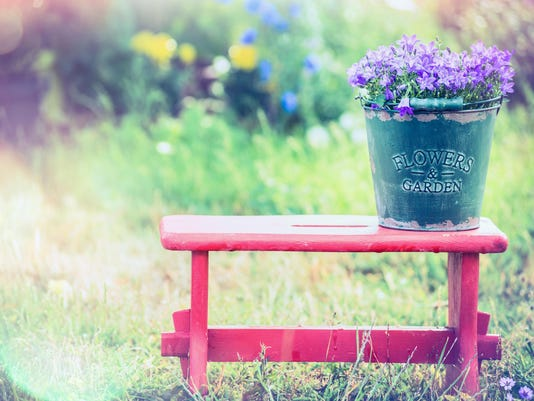 Vintage bucket with garden flowers on red little stool
