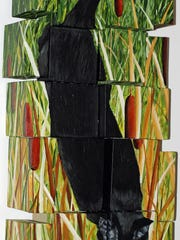 """""""Cat Tails"""" by Lois Duffy"""