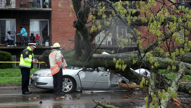 Police investigate after a car traveling north on Reading Road in the Bond Hill neighborhood of Cincinnati was crushed by a tree killing the driver on Sunday.